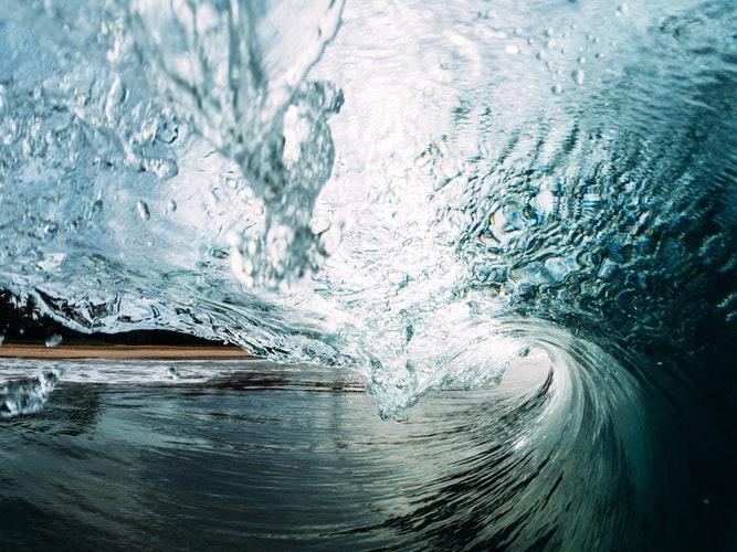 Tsunami de nuevas conciencias